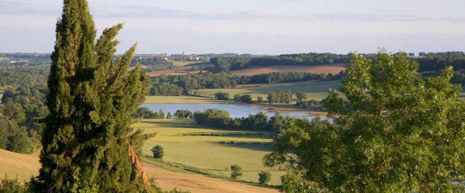 A view of Gascony